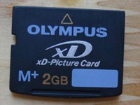 How to Recover Deleted Photos and Videos from XD card?